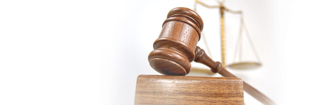 10 Luật sẽ có hiệu lực thi hành kể từ ngày 1/1/2013
