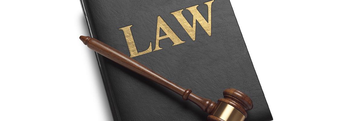 Hoạt động của chi nhánh của tổ chức hành nghề luật sư