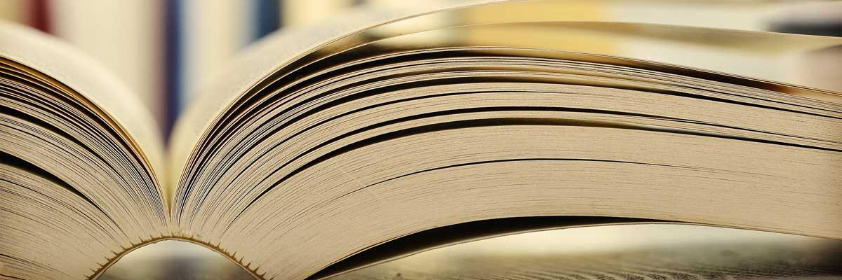 Soạn thảo Hợp đồng chuyển nhượng vốn góp