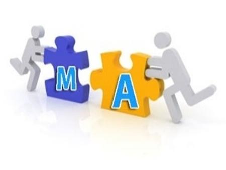 Tư vấn về sáp nhập và chuyển đổi công ty
