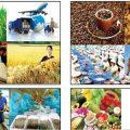 Vì sao sản phẩm Việt có mặt nhiều nơi nhưng ít người biết đến-sblaw