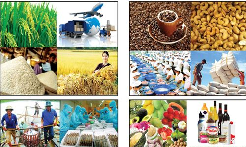 Vì sao sản phẩm Việt có mặt nhiều nơi nhưng ít người biết đến?