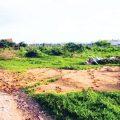 Góp vốn hợp tác đầu tư để mua đất nhưng không triển khai phải làm thế nào-sblaw