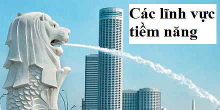 Tư vấn thủ tục thành lập công ty tại Singapore