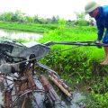 Bảo hộ sáng chế để sáng tạo trên đồng ruộng thành tài sản của nhà nông-sblaw