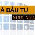 Các hình thức đầu tư mà cá nhân nước ngoài được thực hiện khi đầu tư tại Việt Nam-sblaw