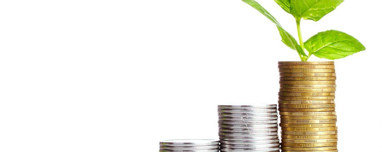 Tư vấn luật tài chính và ngân hàng