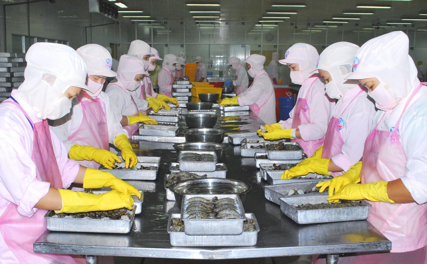 Quy định về khám sức khỏe đối với người lao động làm việc tại bộ phận chế biến thực phẩm bao gói sẵn