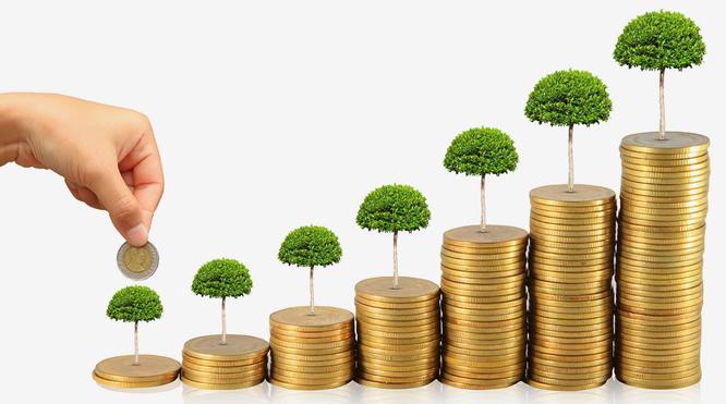 Tăng vốn đầu tư thông qua việc bổ sung vốn góp