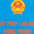 Thủ tục cấp lại Giấy phép lao động cho người lao động nước ngoài tại Hà Nội - internet