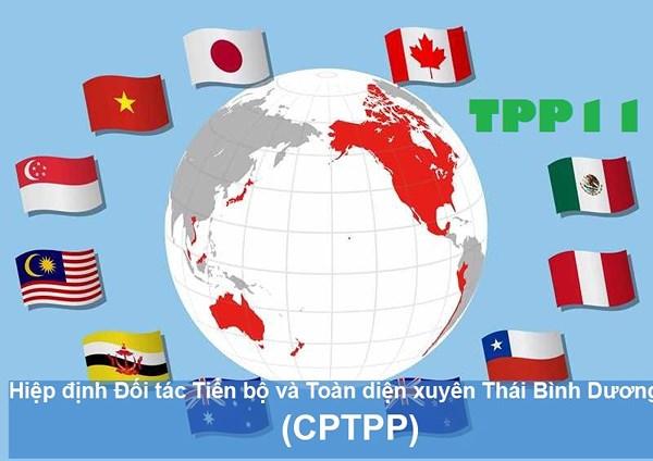 Cơ hội và thách thức SHTT trong CPTPP