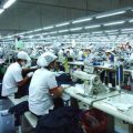 Danh mục sản phẩm được ưu tiên phát triển trong ngành công nghiệp hỗ trợ dệt - may - internet