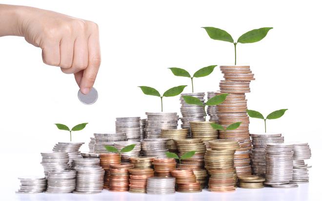Có những hình thức hỗ trợ đầu tư nào?