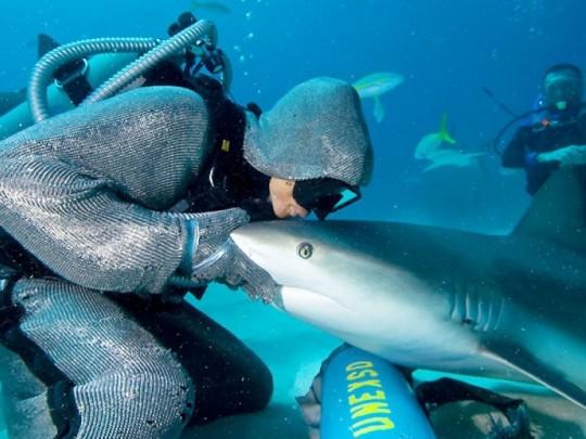 Lao động nữ có thể làm thợ lặn?