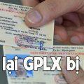 cấp lại giấy phép lái xe bị mất