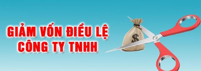 Hình thức giảm vốn điều lệ của công ty TNHH 2 thành viên