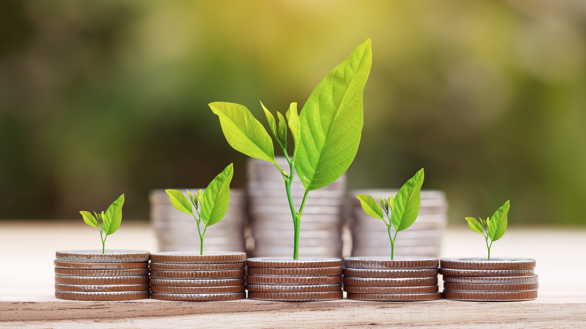 Các biện pháp bảo đảm đầu tư