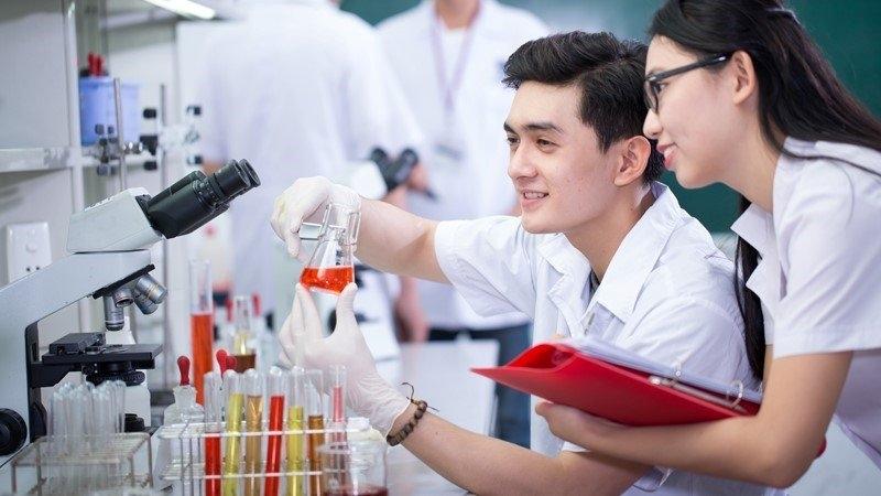 Muốn về Việt Nam để học đại học thì phải làm những thủ tục gì?
