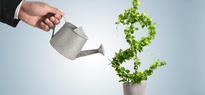 Hiệu lực của Giấy chứng nhận đăng ký đầu tư ra nước ngoài trong trường hợp giả mạo hồ sơ