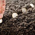 Hồ sơ, thủ tục miễn giảm tiền thuê đất