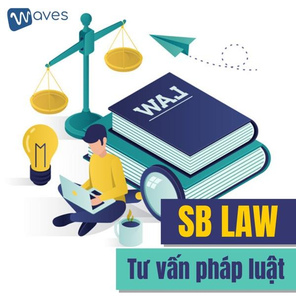 Các hình thức tư vấn pháp luật của SB LAW.